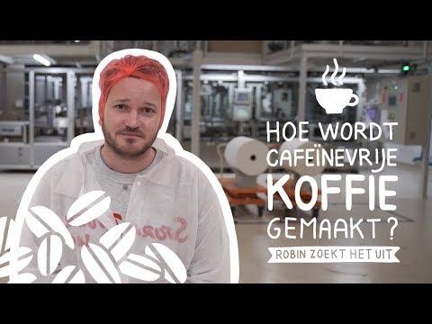 Decafé gemaakt van bonen mét cafeïne?   Robin Zoekt Het Uit #37