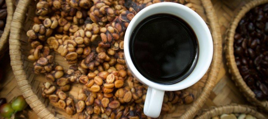 geschmack Kopi Luwak Kaffee
