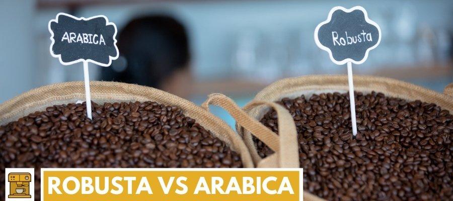 Robusta vs Arabica koffiebonen verschillen