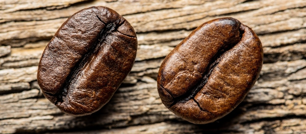 Wann Robusta- oder Arabica Kaffee verwenden?